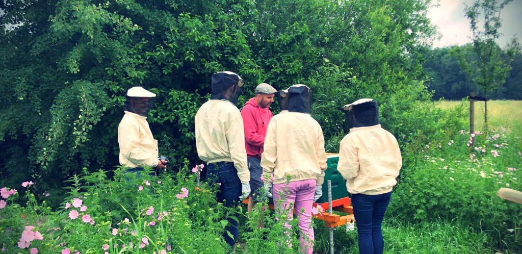 Bienengestütztes Projekt Bienosoph